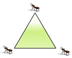 Three ants and triangle puzzle